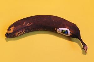 fruit-557932_1920