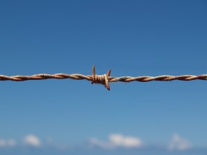barbed-wire-1199172_1920